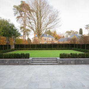 Lime rear garden-2